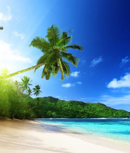 Пляжный отдых: море, океан, солнце и песок