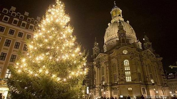 Экскурсии Дрезден