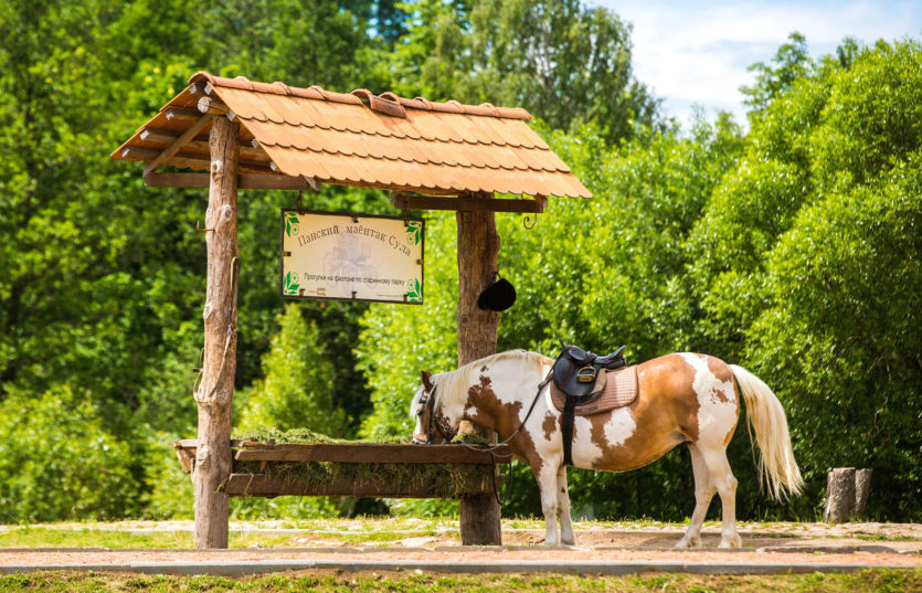 Экскурсии по Беларуси Парк Сула
