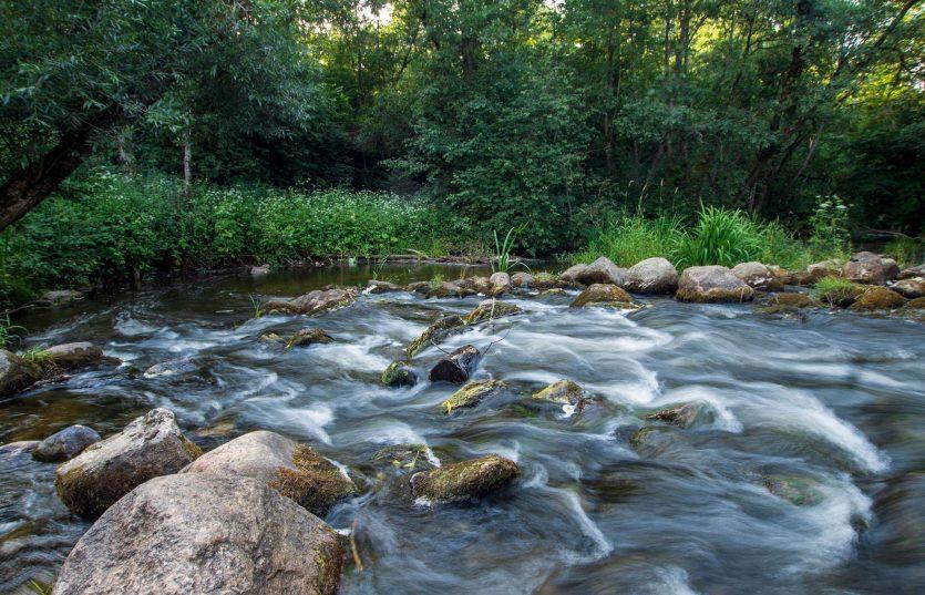 Экскурсия на болото Ельня + водопад на реке Вята